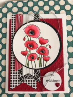 poppies 3.jpg